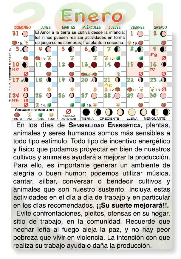 Corte De Pelo Por Calendario Lunar Cortes De Pelo De Moda