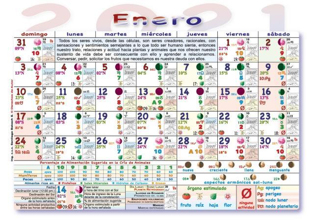 Calendario Lunar De Siembra.Paraguay Almanaque Lunar Agricola 2019 2020 Siembra Plantas